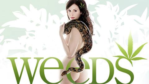 weeds_tv_show